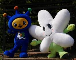 なしかちゃんと行く! 荏子田太陽公園でおさんぽ♪