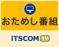 【城好き・歴史好き必見!!】ヒストリーチャンネルがおくる城番組!!