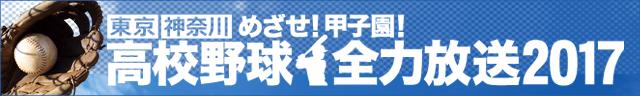 bnr_yakyu_chusen_640x96