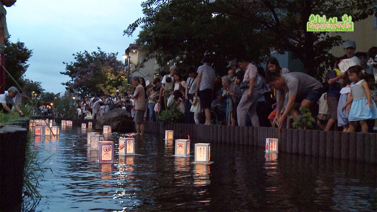 江川せせらぎ遊歩道で灯ろう流し