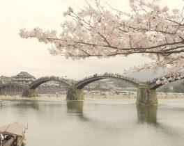 けーぶるにっぽん祭・JAPAN【10月は新潟長岡・山口・岩国を紹介します】