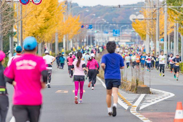 青葉区民マラソン1