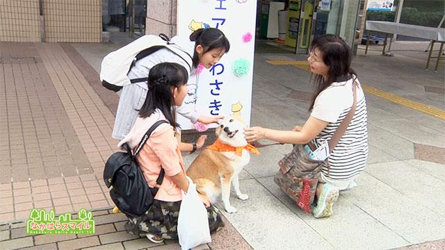 「動物愛護フェアかわさき2017