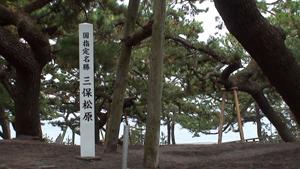 秋の撮影旅行(ご一行様荒天の中駿河路を行く!!)