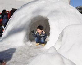 子どもたちに北国から雪のプレゼント『新年子どもまつり』