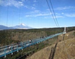 富士山と三島スカイウォーク_クロ