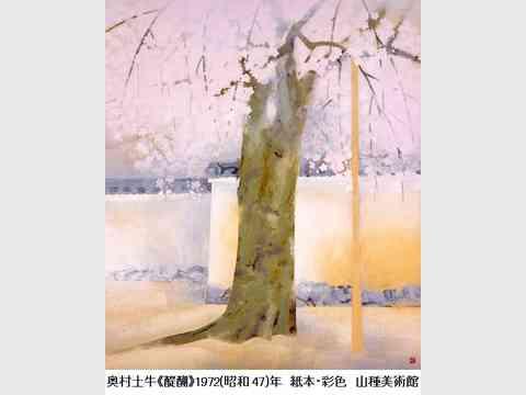 桜 さくら SAKURA 2018 ―美術館でお花見!―