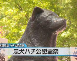 特別保護区 春の一般開放ほか4/9放送内容(10ch)