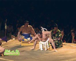 「大相撲川崎場所」を取材しました!