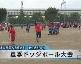 夏季親子ドッジボール大会ほか6/21放送内容(11ch)