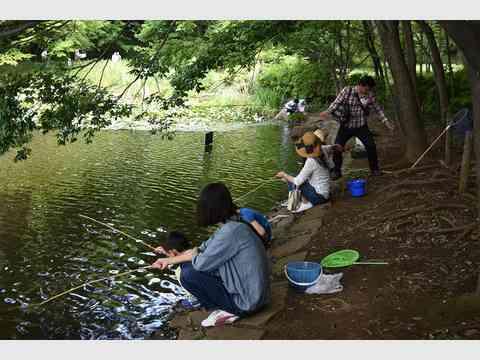 大池の生き物観察会