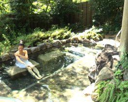 【プレゼント】箱根天然温泉 てのゆ ご招待券 ペア5組様