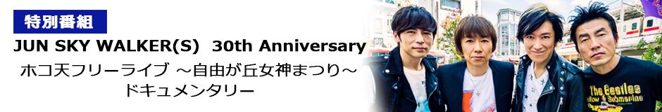 JUN SKY WALKER(S)  30th Anniversary ホコ天フリーライブ ~自由が丘女神まつり~ ドキュメンタリー