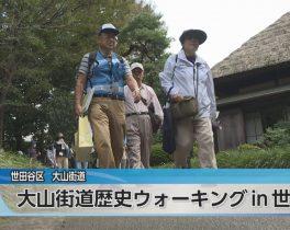 大山街道歴史ウォーキング in 世田谷ほか10/8放送内容(11ch)