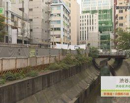 渋谷川【東京】 11/12 ~放送内容