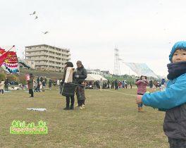 「第38回新春凧揚げ大会」を取材しました!