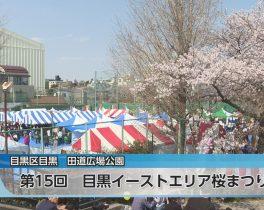第15回 目黒イーストエリア桜まつりほか4/11放送内容(11ch)