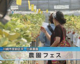 農園フェスほか5/18放送内容(11ch)