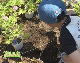 「親子で花植え体験!」を取材しました!
