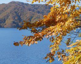 「中禅寺湖の紅葉」など視聴者の皆様からの映像をお伝えします。10/21(月)~放送内容