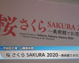 桜 さくら SAKURA 2020 ―美術館でお花見!―ほか3/26放送内容(11ch)