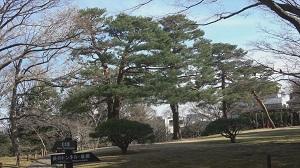 殿ヶ谷戸庭園(庭さんぽ)