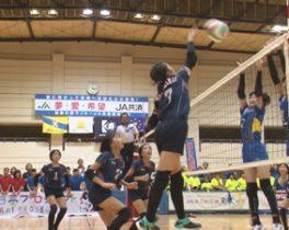 【11/28・12/19放送】JA共済杯 第41回 神奈川県小学生バレーボール大会
