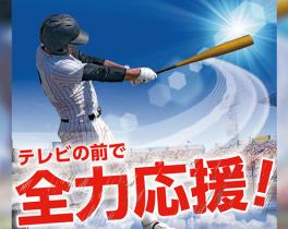 東京・神奈川 高校野球選手権大会